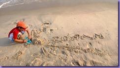 Fire Island Beach Digger