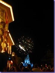 Day 4 Disney Fireworks